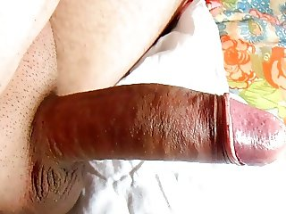 Shaved show