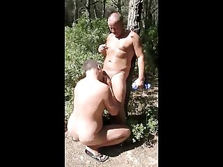 In the forest in spain...