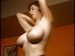 SHE'S A LADY - vintage nylons striptease stockings