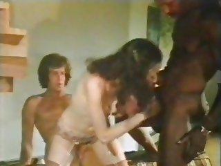 Swedish Erotica 5.10.11. (USA-1979-80)