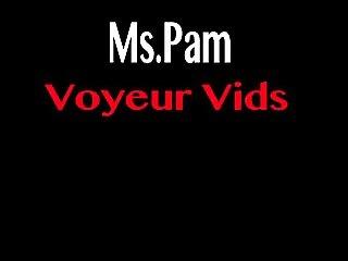 Ms.Pam's Voyeur prev.